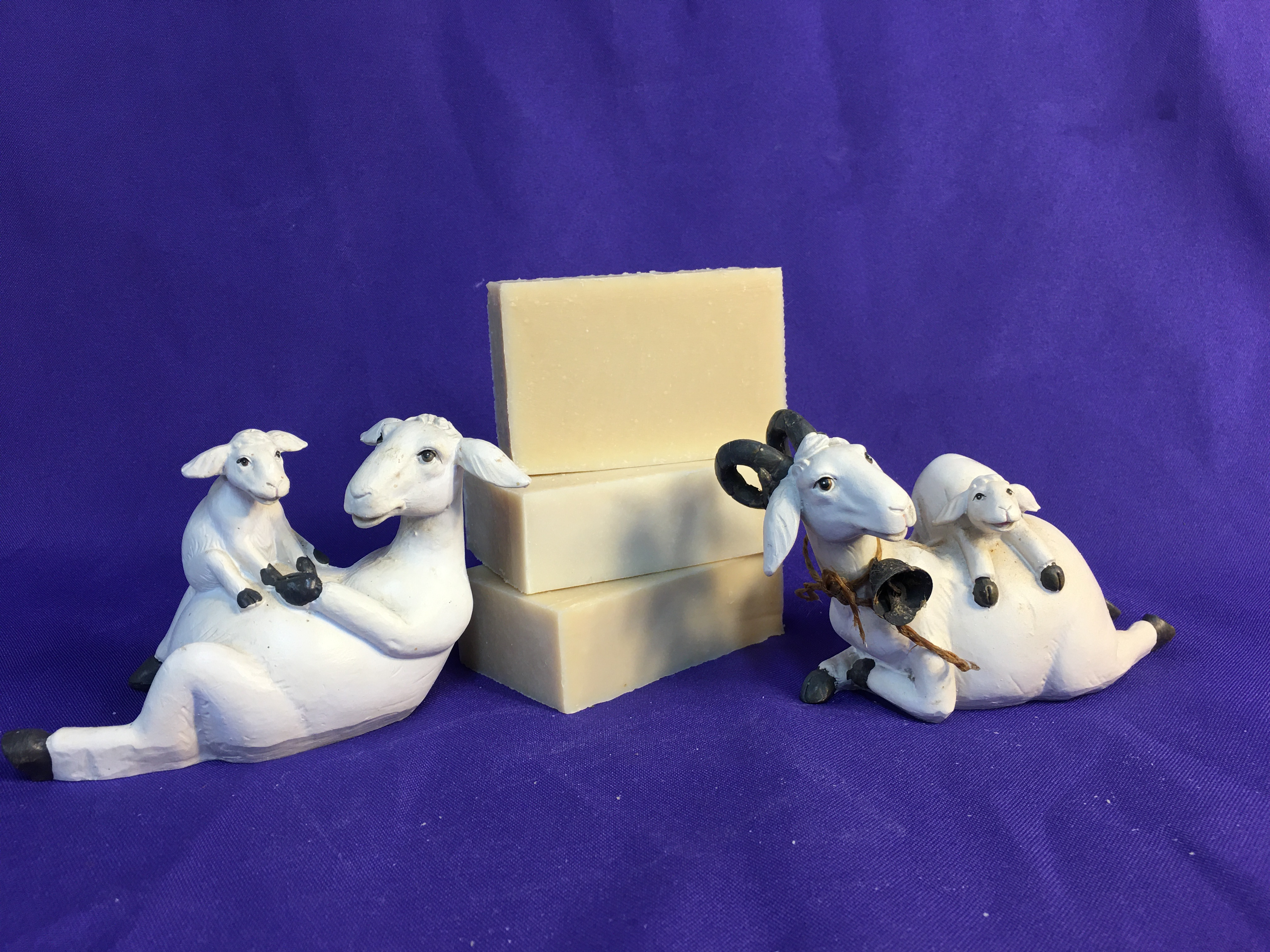 January Soap of the Month - Oat & Goat (unscented)