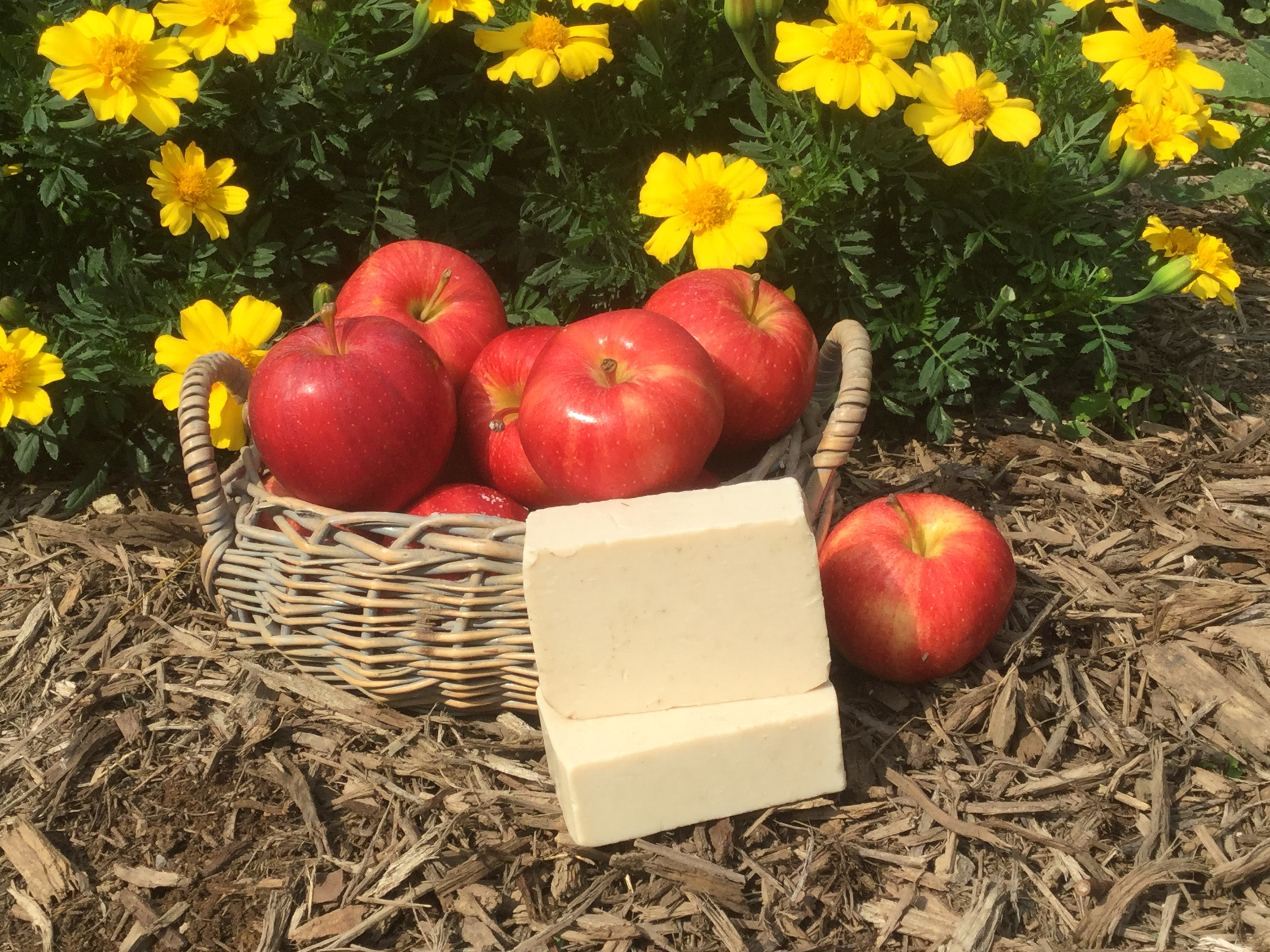 September Soap of the Month - Apple