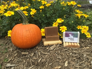Pumpkin Chai - Goat Milk Soap